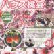 日本一早い『ハウス桃宴』